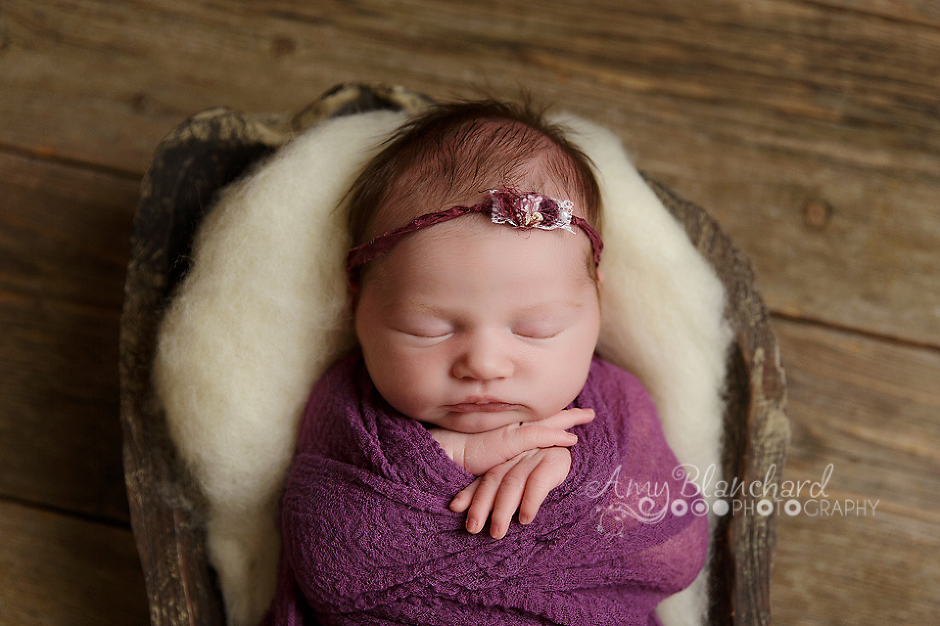 omaha-newborn-photography-purple